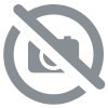 Pizza royale Jambon, champ., from., tomate, 480 gr